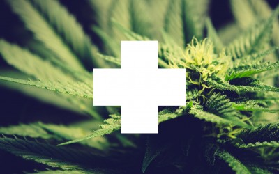 Doctor's Recommendation & Medical Marijuana Identification Card (MMIC). What's the difference and how to get them.