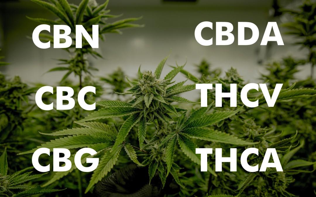 CBN CBC CBG CBD THC CBDA THCV THCA