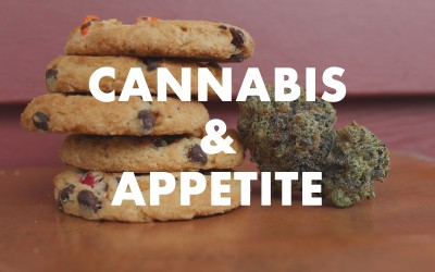 Using Cannabis for Help with Appetite