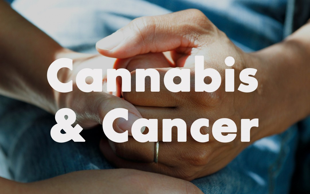 Using Cannabis Marijuana Weed Cancer Patients treatment